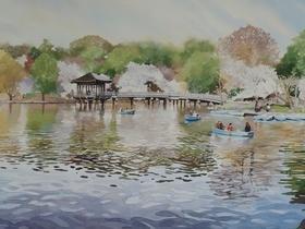 Boating Lake at Nara